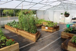 Keder house with vegetables in raised beds