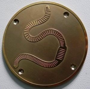 brass rubbing plate of worm